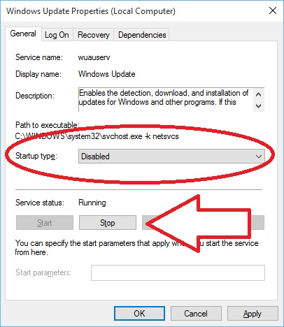 Windows 10 Forced Updates on Surface - Properties