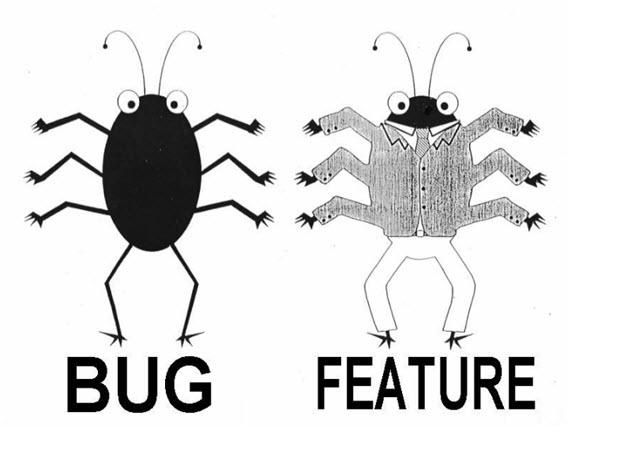 software_developer2